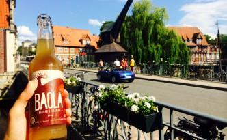 Baola in Lüneburg