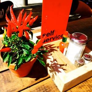 Tisch in der Sonne mit Gewürzen und Chillipflanze