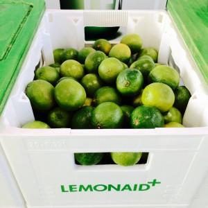 LemonAid Pfandkiste mit Limetten gefüllt
