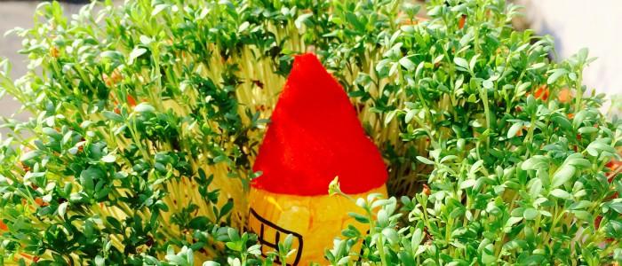 Kresse von oben, in der Mitte ein Ei mit roter Zipfelmütze