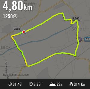 Laufstrecke, Screenshot aus Nike+