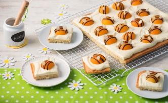 Bienchenkuchen auf dem Rost und einzelne Stücke